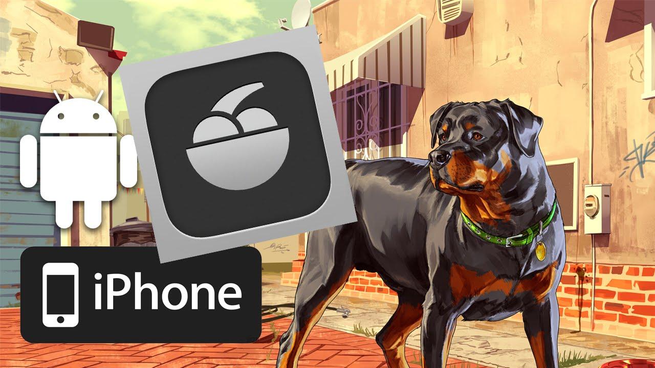 Chop Dog Gta 5 Gta 5 Chop Avec L'app Ifruit