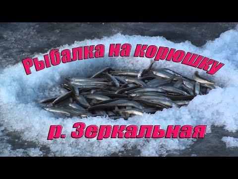 рыбалка в приморском крае на корюшку