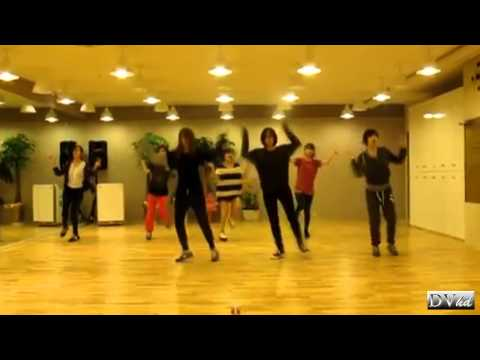 T-ara - Lovey Dovey (dance practice) DVhd Music Videos