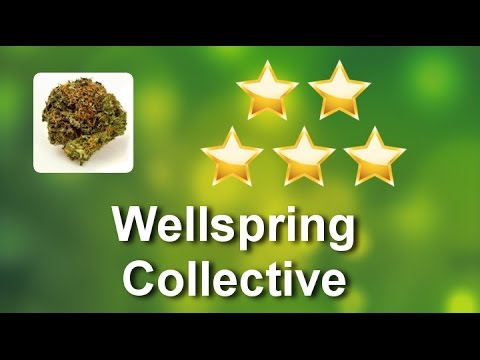 Wellspring Collective Denver  Great 5 Star Review by Darren M.