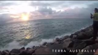 Drone Footage Shows Shark on West Australian Coast