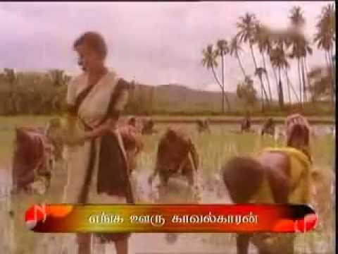 Aasayila Pathikatti Songs By Enga Ooru Kavalkaran Tamil Video.mp4 By Nataraj Pallathur video