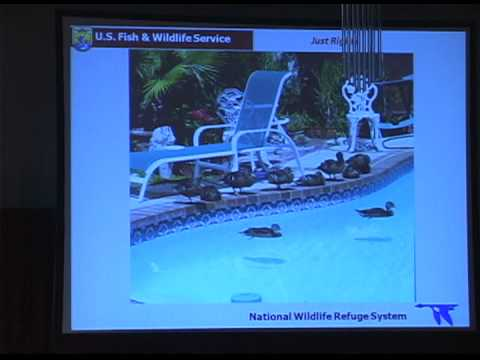 Workshop: Refuge Water Resources -- Management for People and Wildlife