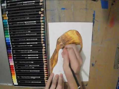 Color Portrait Drawings Drawing Hair Colored Pencil