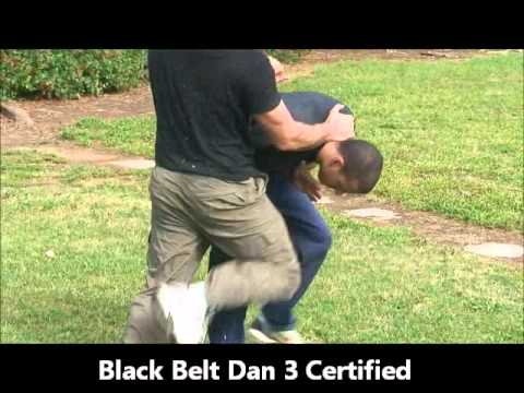 Krav Maga Expert security personnel & Martial Art Coach Image 1