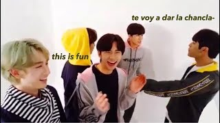 stray kids on crack (per usual) #9