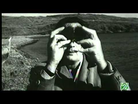 La Proporción Áurea | Documental Redes Eduard Punset