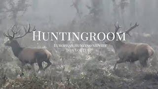 The Huntingroom - Rothirsch, Wildschwein, Mufflon Und Rehbockjagd In Europa 2015