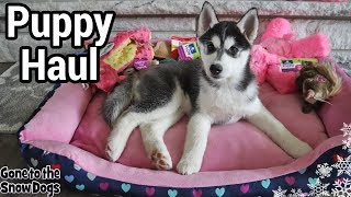 New Husky Puppy Haul