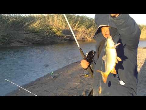 что делать если рыбалка не удалась