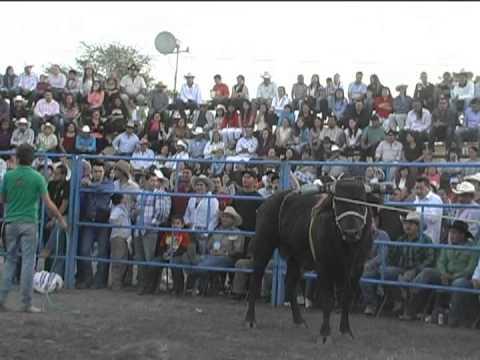 Los Destructores Memo Ocampo, Rancho El Monte De Los Juarez 1/6/2013 (parte 2/4)