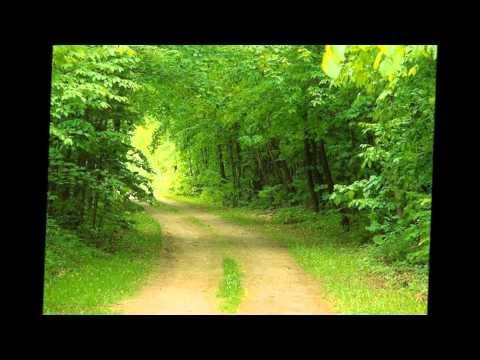 Kachin Songs video
