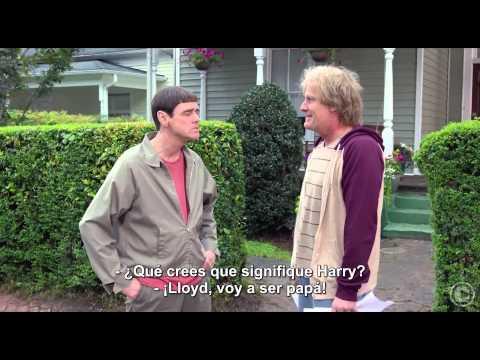 Tonto y retonto 2 - Trailer - Cines Fenix