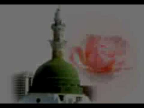 Saifi Naats Alif Allah video