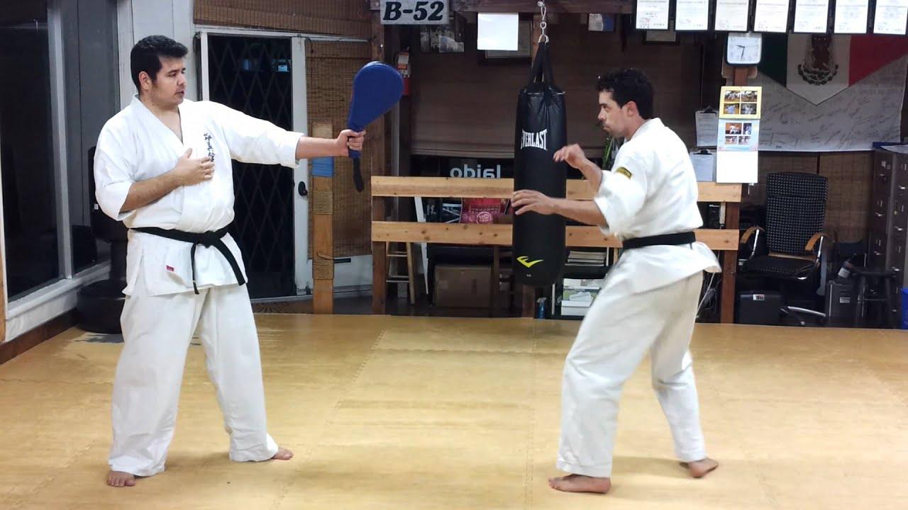 Paddle work: ushiro mawashi geri ( back spin kick)
