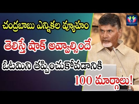 Chandrababu Naidu Implementing His Political Strategies | 2019 Assembly Elections | TFC News