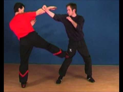 DRAGOS WING TSUN BOOTCAMP LONDON 2011 VIDEO2-Impression on Basics-and-Technician-Level1-5.mp4 Image 1