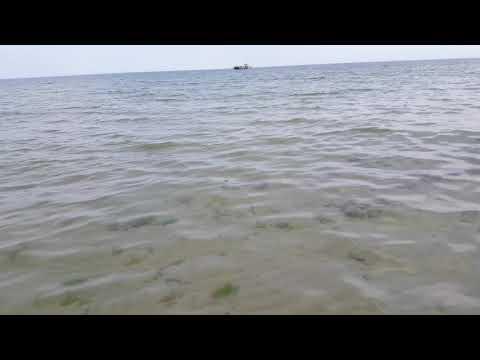 Polskie Morze Też Jest Piękne