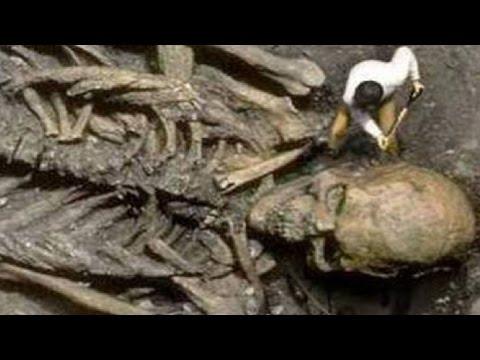 общем останки скелета 12 метров блондинка надела сексуальные