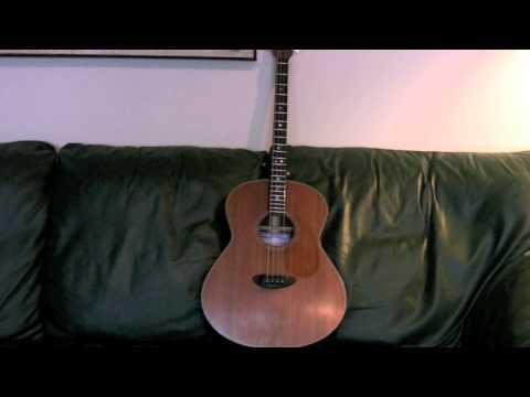 Herb Taylor Tenor Guitar