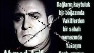 AHMET ARIF - ANADOLUYUM