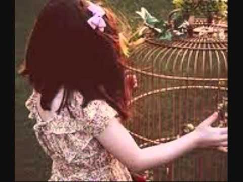 Sopor Aeternus - Cage Within A Cage...