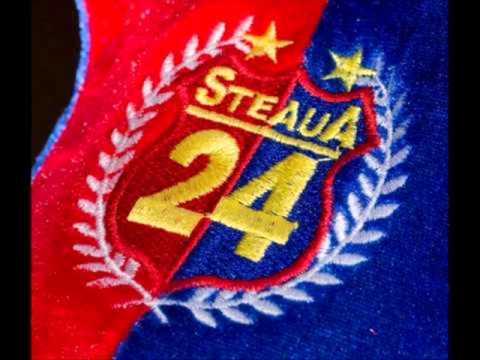 STEAUA TITLUL 24 - 2013