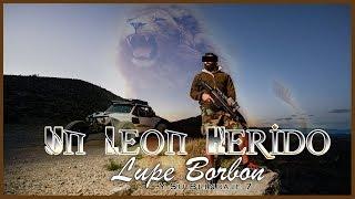 15. Un Leon Herido (Gente Nueva Salazar) - Lupe Borbon Y Su Blindaje 7 - Exclusivo Compa Xisco