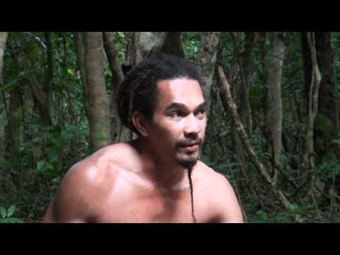 The Story of the Fo'ui Tree - Tonga
