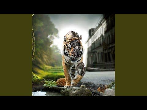 Download  Eshek Moot Gratis, download lagu terbaru