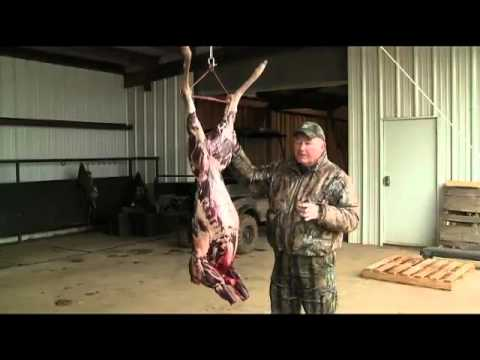 Butchering a Deer 101: Cleaning Station
