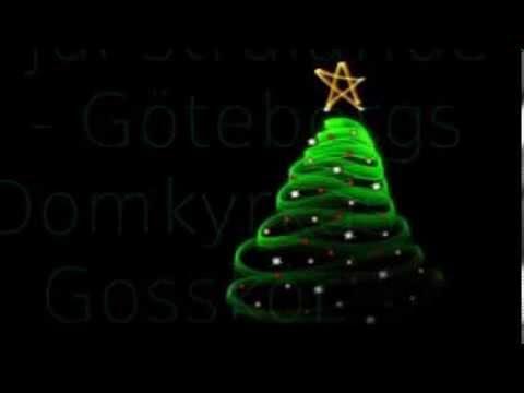Göteborgs Domkyrkas Gosskör - Dagen Är Kommen
