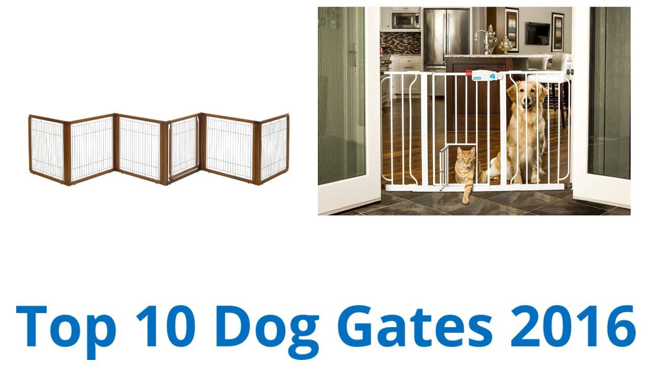 10 Best Dog Gates 2016