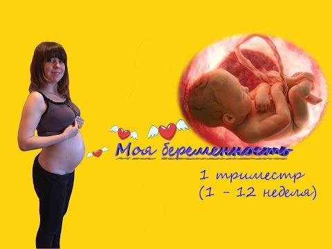 Советы беременным в первом триместре беременности