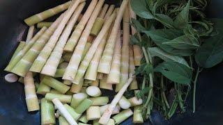 Laos Food, Bamboo shoot curry