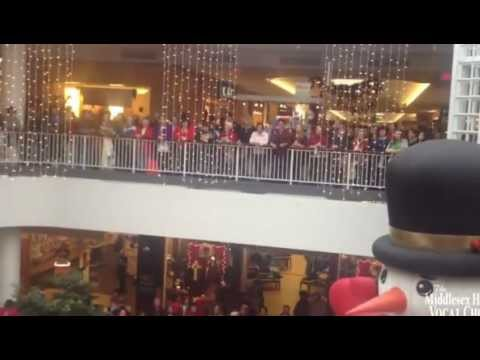 Connecticut Flash Mob Hallelujah Chorus Middlesex Hospital Vocal Chords 2012 HD