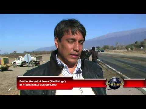 Accidente múltiple en Catamarca provocado por animal suelto