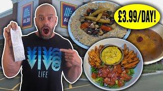 Aldi Cheap Vegan Full Day Of Eating + Nutrient Analysis