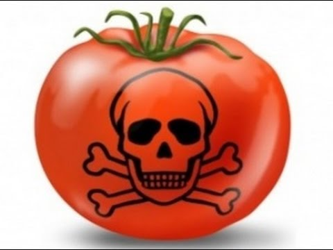 Мир согласно Монсанто (Monsanto) - русский перевод