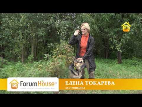 Начало деревенской жизни. Личный опыт горожанки (ForumHouseTV)
