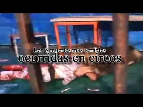 Las 5 muertes más terribles ocurrridas en circos