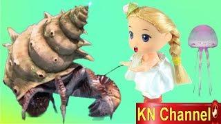 KN Channel BÚP BÊ BẮT CON ỐC MƯỢN HỒN | CÂU CÁ FISHING GAME VỚI BÉ NA