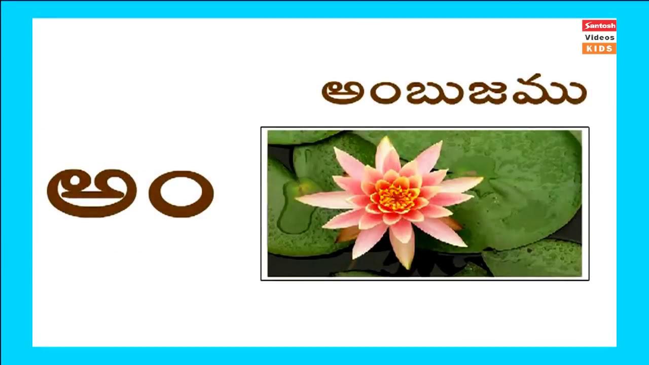 Watch on Telugu Alphabets