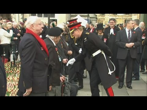 Prince Harry visits Field Of Remembrance at Westminster Abbey