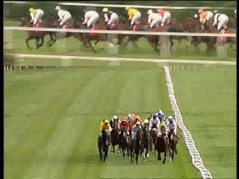 Festival of H.H SHEIKH MANSOOR BIN ZAYED AL NAHYAN - GERMANY - Arabian Flat Horse Racing in Europe