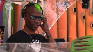Tomorrowland 2013 - Green Velvet
