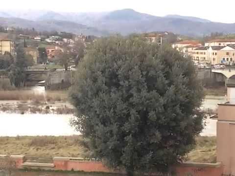 MeteoReporter San Giovanni Valdarno 10/02/2016