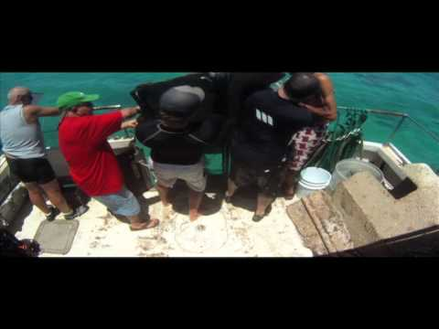 Marine Debris Removal and Prevention Program Educational Trailer