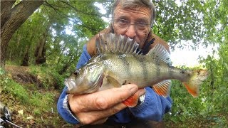 CREEK FISHING with a PEN ROD - NOT FISHED FOR 50 YEARS!!