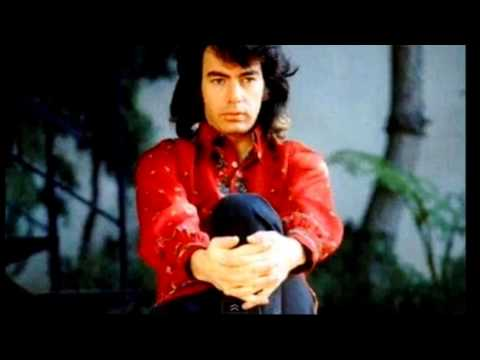 Neil Diamond - The Time Is Now